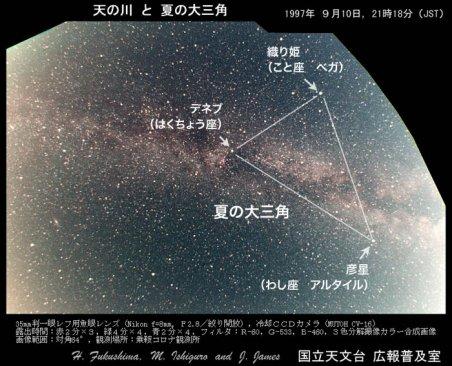 縮小夏の大三角.jpg